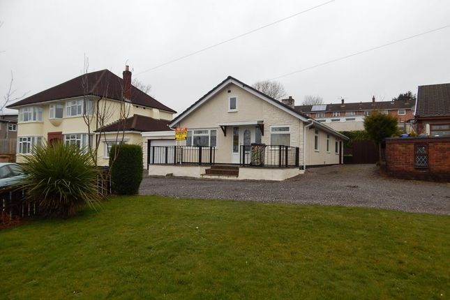 Thumbnail Detached bungalow to rent in Mount Pleasant Road, Pontnewydd, Cwmbran