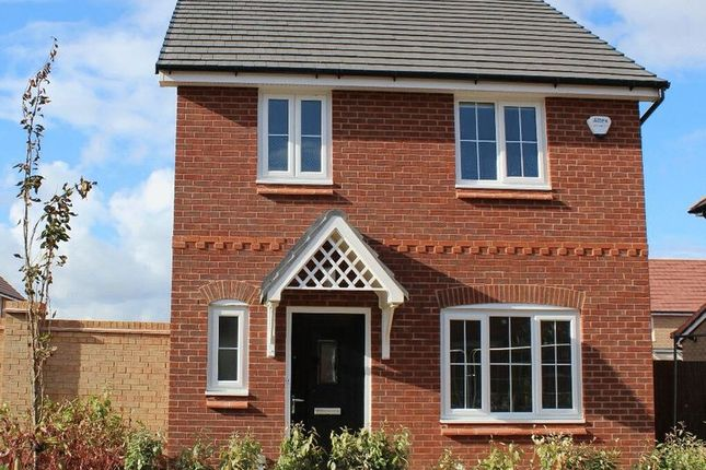 Thumbnail Detached house to rent in Greenham Avenue, Kirkby, Liverpool