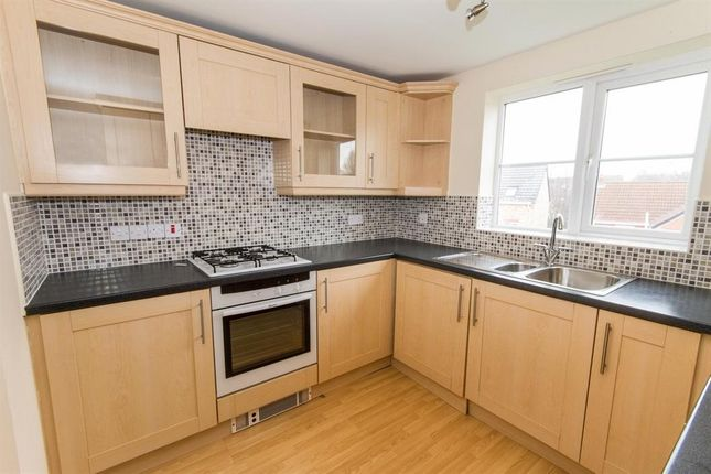 Thumbnail Town house to rent in Hanworth Close, Hamilton, Leicester