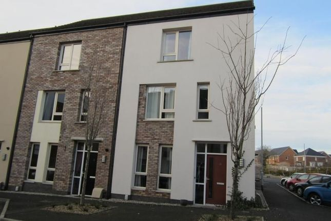 Thumbnail Property to rent in Sycamore Mews, Lisburn