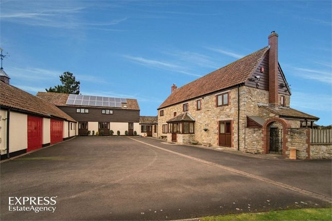 Thumbnail Detached house for sale in Haydon, Taunton, Somerset