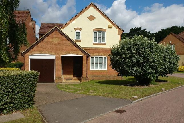 Thumbnail Detached house for sale in Winkfield Row, Berkshire