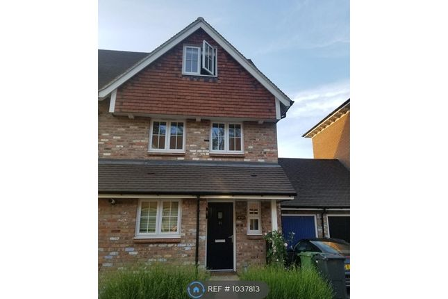 4 bed semi-detached house to rent in Woodland Way, Hastings TN34