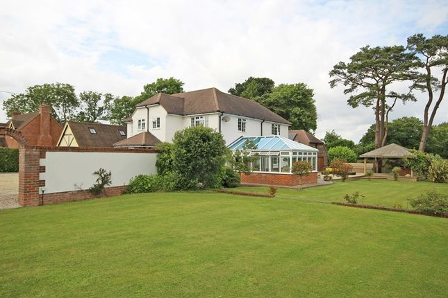 Thumbnail Detached house for sale in Solent Road, Naish Estate, New Milton