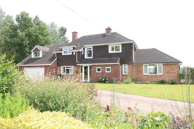 Thumbnail Detached house for sale in Peterstow, Ross-On-Wye