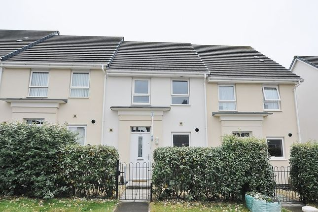 Thumbnail Terraced house to rent in Efford Road, Plymouth