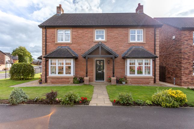 Thumbnail Detached house for sale in Birchwood Way, Dumfries