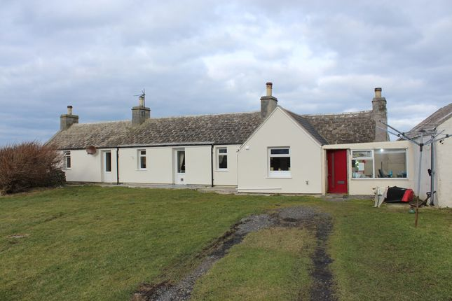 Thumbnail Cottage for sale in Lady Village, Sanday, Orkney