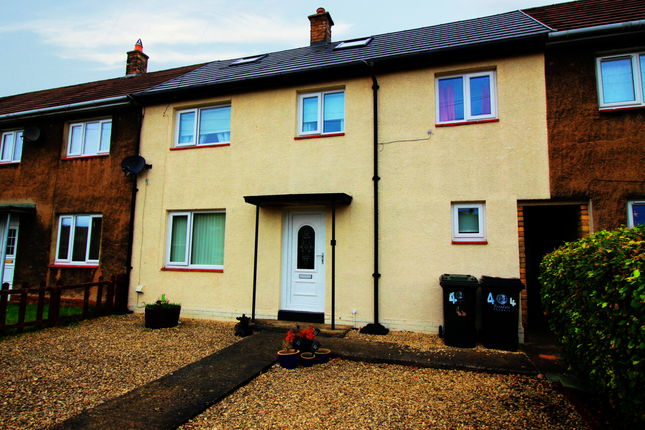 Thumbnail Terraced house for sale in Strother Close, Hexham, Northumberland