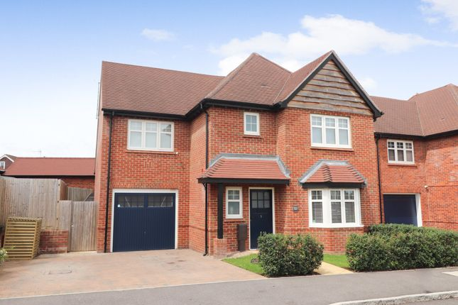 Thumbnail Detached house for sale in Hawthorn Grove, Waltham Chase, Southampton