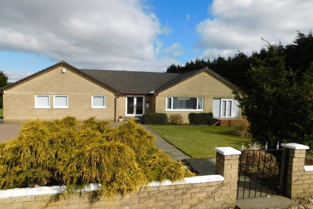 Thumbnail Bungalow for sale in Greenhill Road, Cleland, Motherwell