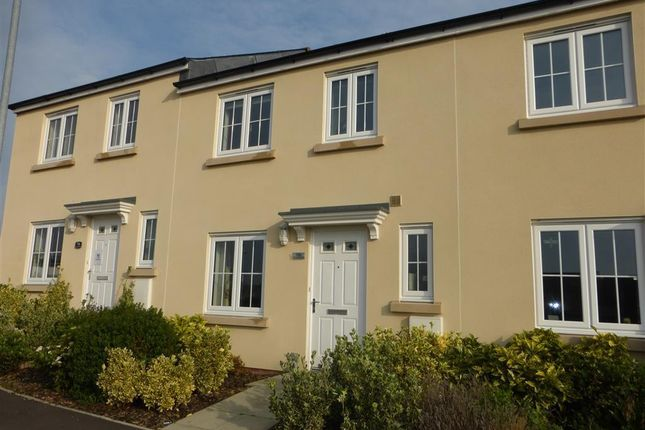 Thumbnail Property to rent in Cunningham Road, Yeovil