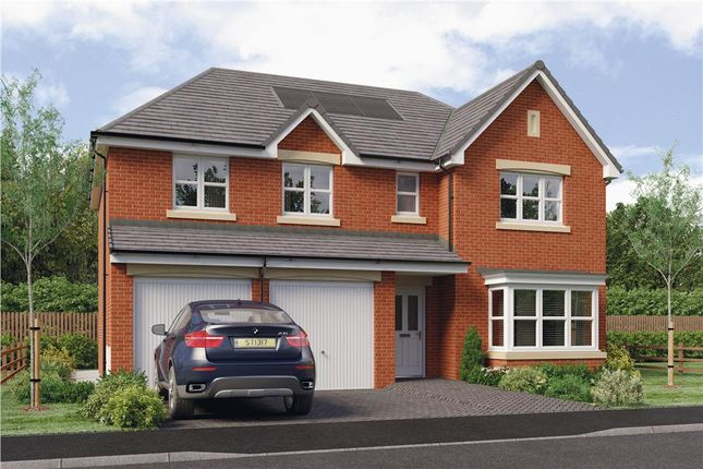 """Thumbnail Detached house for sale in """"Kinnaird"""" at Brora Crescent, Hamilton"""
