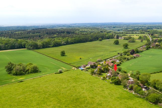 Thumbnail Detached house for sale in Forestside, Rowland's Castle, West Sussex