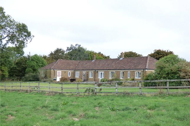 Thumbnail Property for sale in New Park Farm, Bratton Seymour, Wincanton, Somerset
