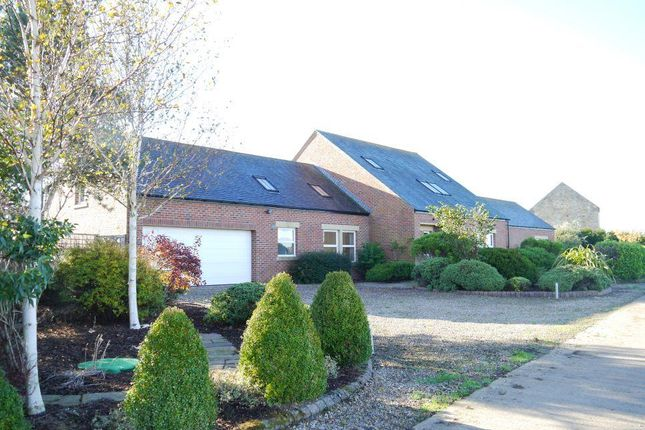 Thumbnail Detached house to rent in Whalton, Morpeth, Northumberland