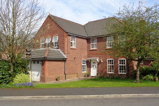 Thumbnail Detached house to rent in Pikes Bridge Fold, Eccleston, St Helens