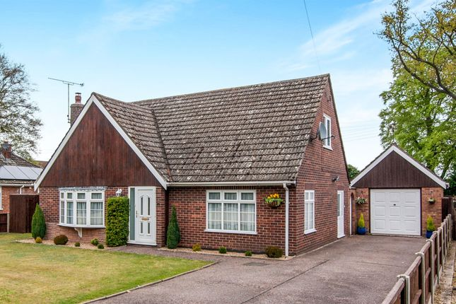 Thumbnail Detached bungalow for sale in Pilgrims Way, Weeting, Brandon