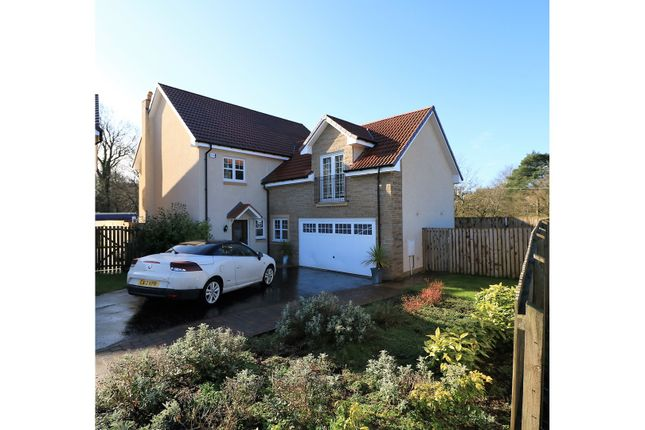 Thumbnail Detached house for sale in Thomson Drive, Falkirk