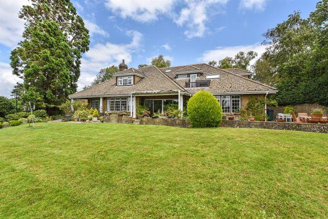 Thumbnail Detached house for sale in Badgers Holt, Storrington, West Sussex