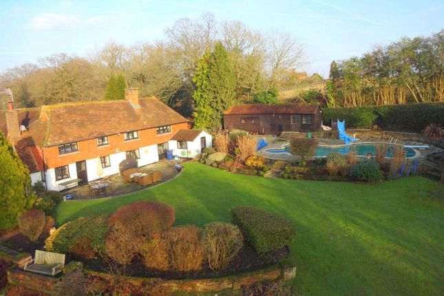 Thumbnail Detached house to rent in Alfold Road, Cranleigh