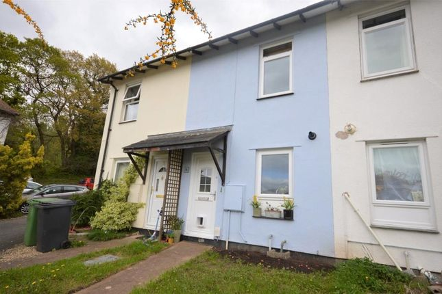 Thumbnail Terraced house for sale in Chelmsford Road, Exeter, Devon