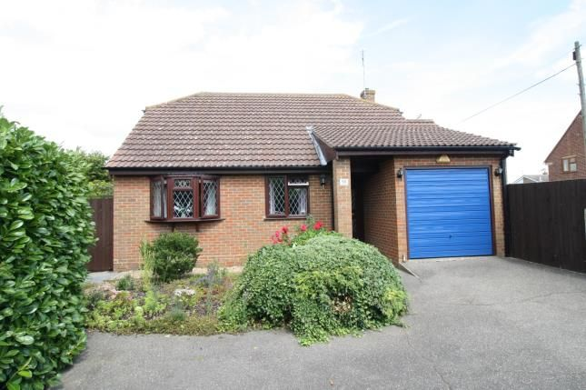 Thumbnail Bungalow for sale in Latchingdon, Maldon, Essex