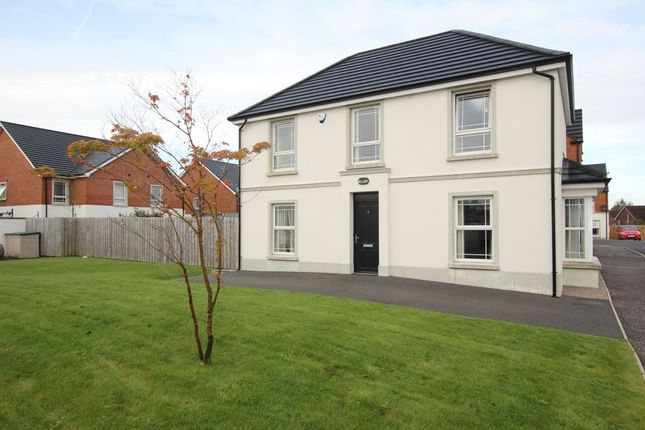 Thumbnail Detached house for sale in Sandymount Green, Newtownabbey