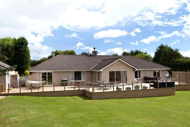Thumbnail Bungalow for sale in Grangeburn House, Coldingham, Eyemouth