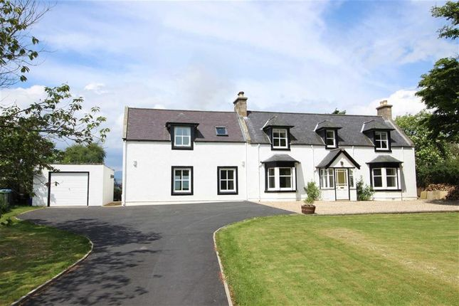 Thumbnail Detached house for sale in Glentyan, Culbokie, Ross-Shire