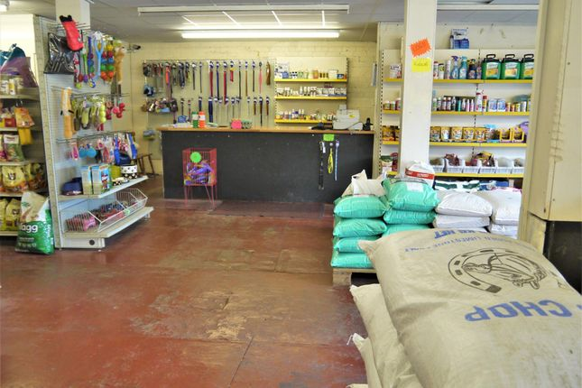 Photo 0 of Pets, Supplies & Services BD12, Wyke, West Yorkshire