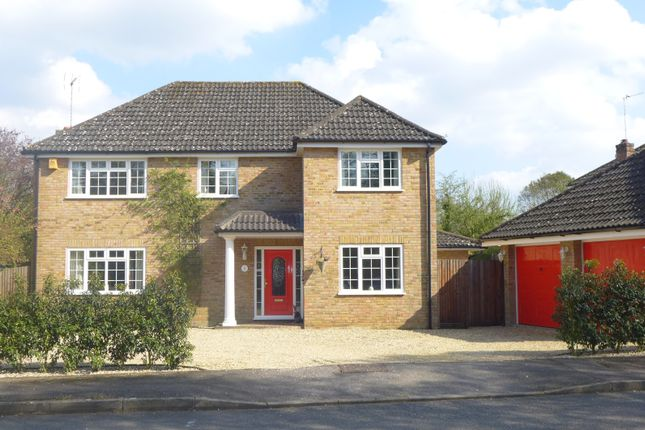 Thumbnail Detached house for sale in Phoenix Court, Hartley Wintney, Hook