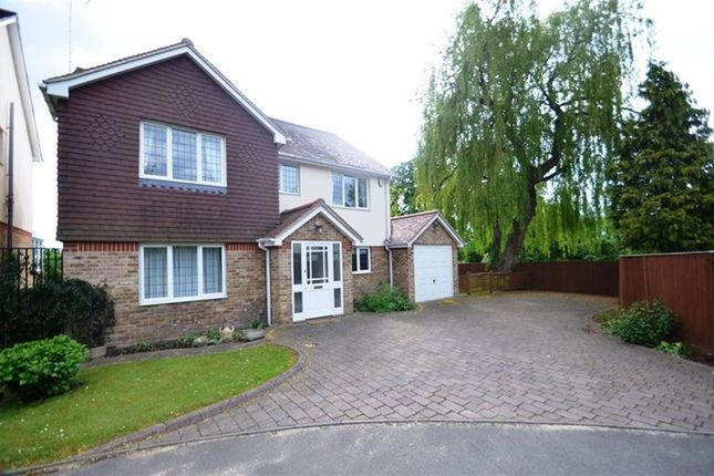 Thumbnail Property to rent in The Drive, Ickenham
