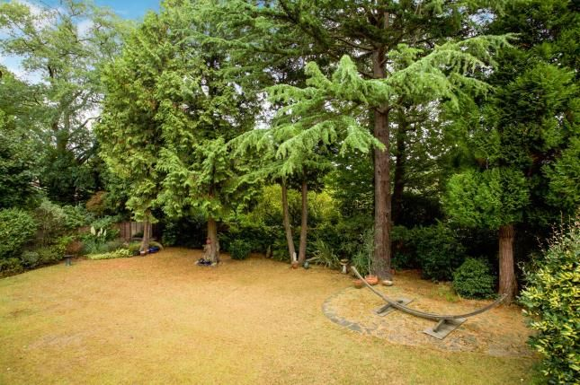 Garden of Forest Road, Pyrford, Surrey GU22
