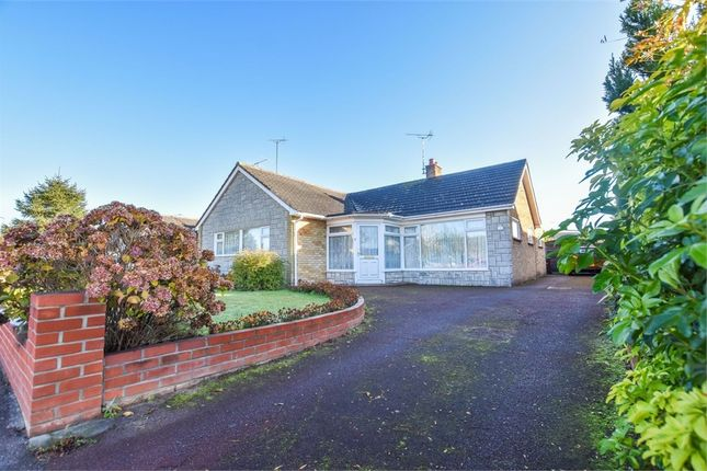 Thumbnail Detached bungalow for sale in Holly Road, Stanway, Colchester, Essex