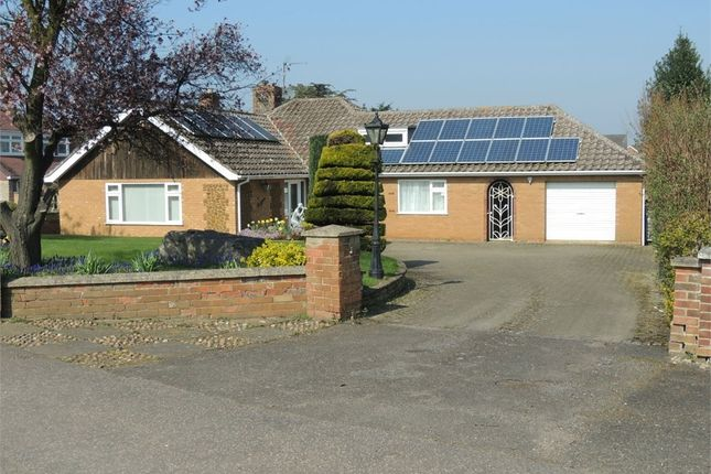 Thumbnail Detached bungalow for sale in Bexwell Road, Downham Market