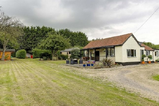 Thumbnail Detached bungalow for sale in Royston Road, Buntingford
