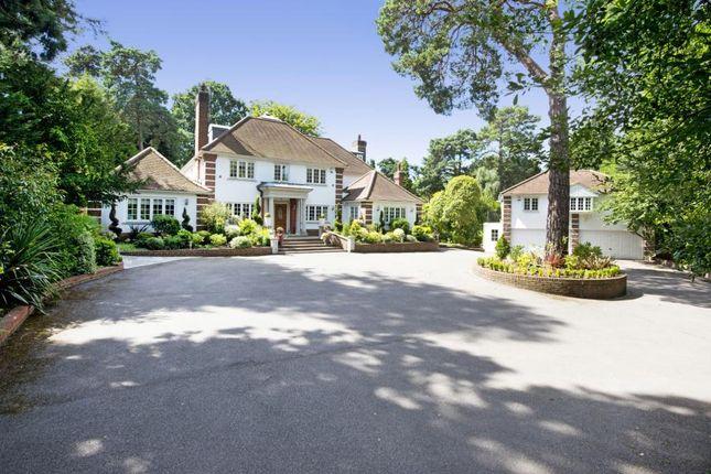 Thumbnail Detached house for sale in Pine Glade, Keston Park, Kent