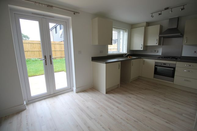 Thumbnail End terrace house to rent in Great Tree View, Paignton