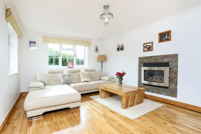Thumbnail Bungalow to rent in Hereford Lane, Farnham