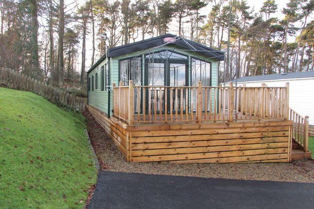 Causey Hill Holiday Park, Hexham, Northumberland NE46