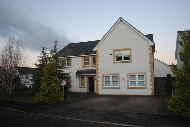 Thumbnail Detached house to rent in Holmwood Park, Crossford, Carluke