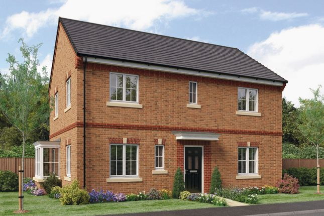 Thumbnail Detached house for sale in The Stevenson, Barley Meadows, Cramlington, Northumberland