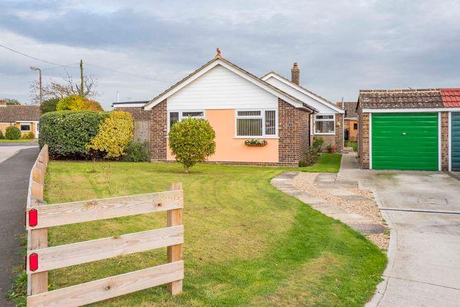 Thumbnail Detached bungalow for sale in Elmstead, Colchester, Essex