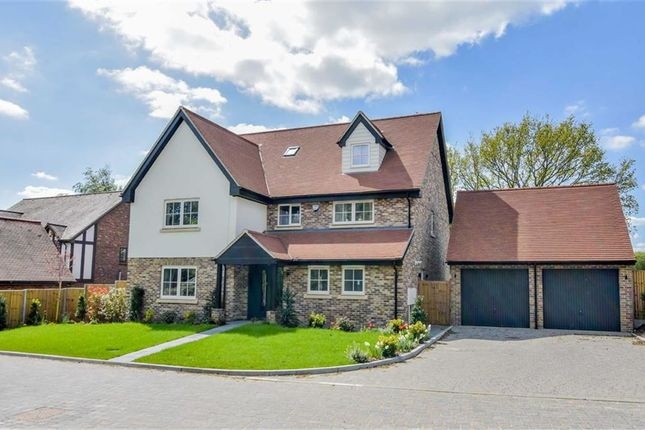 Thumbnail Detached house for sale in Millers View, Much Hadham, Hertfordshire