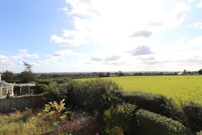 Picture 16 of Little Meadow, Pyworthy, Holsworthy EX22