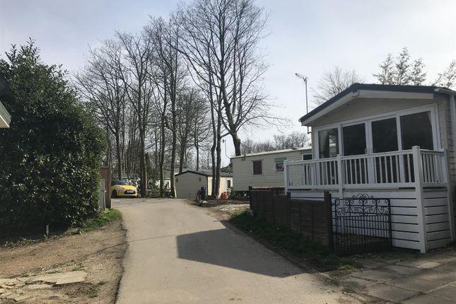 External Park of Ridge West, St. Leonards-On-Sea, East Sussex TN37
