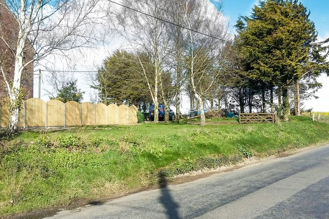 Winfarthing Road, Banham, Norwich NR16