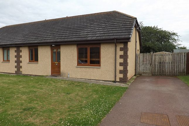 Thumbnail Semi-detached bungalow for sale in West Newfield Crescent, Alness