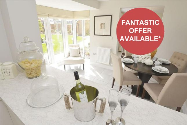 "Thumbnail Detached house for sale in ""Cambridge"" at Weddington Road, Nuneaton"